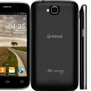 Voice Xtreme V25